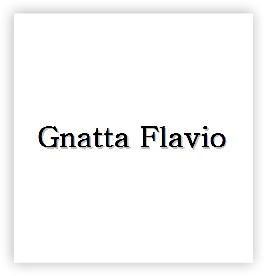 Flavio Gnatta